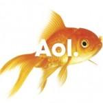 custom_1259697035747_new-aol-branding